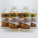 Jelly Gamat QnC